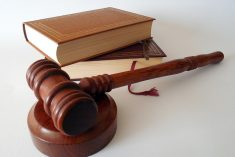Adwokat rozwodowy Katowice